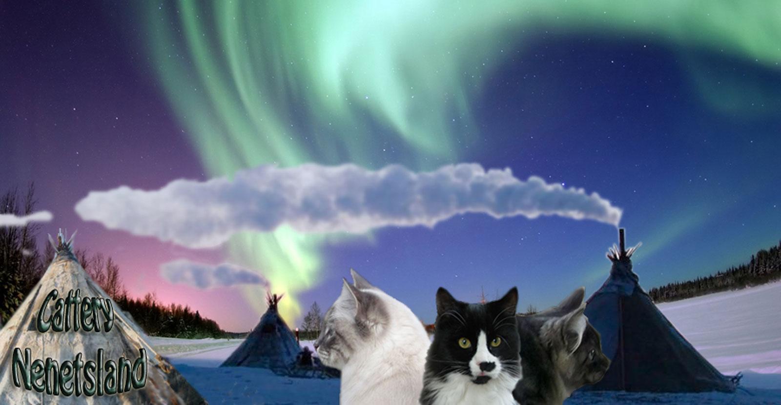 Nenetsland